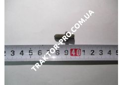 Винт стопорный оси коромысла GB71-85 TY290