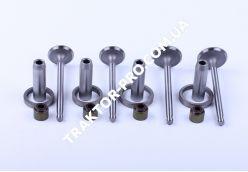 Клапана впуск выпуск + седла + направляющие TY295 (Xingtai 220/224)